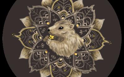 Marmotte & amitié